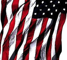 USA Stars and Stripes by Dujashin