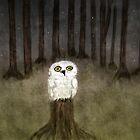 the white owl by Bridgett Ferguson