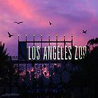 LA Zoo by Jenifer