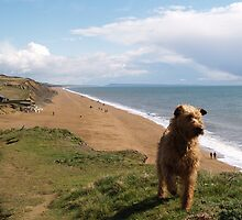 Down Chesil Beach by Jonathan Dower