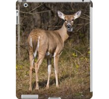 Deer Doe - Ottawa, Ontario iPad Case/Skin