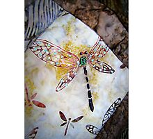 BEADED DRAGONFLY QUILT DETAIL Photographic Print