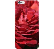 Wonderfully Red Roses iPhone Case/Skin