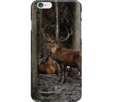 Elk in the Forest iPhone Case/Skin