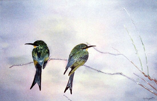 Swallow-tailed bee-eaters by Faye Doherty