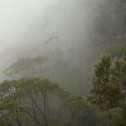 Misty Mountains by Martin  Hoffmann