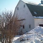 Barn at the farm in Iowa - Feb 2008  View 3 by Christopher Johnson