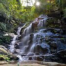 Sylvia Falls, Blue Mountains by Nick  Taylor