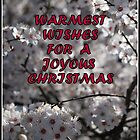 TO my RB friends....Warmest Wishes for a Joyous Christmas !! by Lozzar Flowers & Art