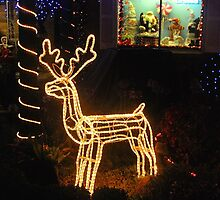 Golden Reindeer by Penny Smith