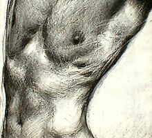 Male Torso by Garth Horsfield