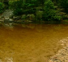 Glenbrook Jelly bean pool Panorama by STEPHEN GEORGIOU
