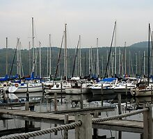 Seneca Lake Harbor, NY by Cheri Perry