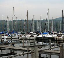 Seneca Lake Harbor, NY by Cheri Perry