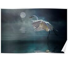 Moonlight Rhapsody Poster