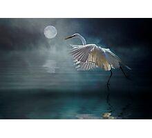 Moonlight Rhapsody Photographic Print