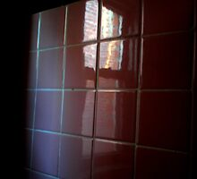 A Gaze Through The Bathroom Tiles by lolowe