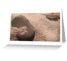 Sand and Rock #2 Greeting Card