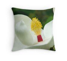 Magnolia Grandiflora - Sydney Royal Botanic Gardens, NSW Throw Pillow