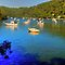 Berowra Waters by Warren. A. Williams