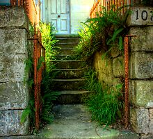 Rustic Gateway and Steps - Womerah Avenue, Darlinghurst, NSW Australia by Mark Richards