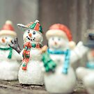 Let it Snow by lisapowell