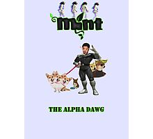Mint - The Alpha Dawg Photographic Print