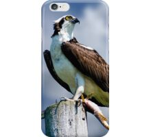 Osprey with Pike iPhone Case/Skin