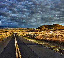 Saddle Road by Philip James Filia