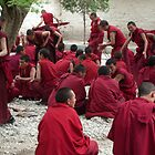 Monks Debating by Michelle Thomson