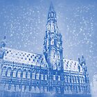 Christmas at Town Hall, Brussels, Belgium by vadim19