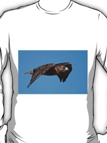Red-tailed Hawk - Amherst Island, Ontario T-Shirt