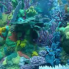 Coral Gardens by Cathy Jones