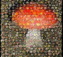 The Mushroom, A Digital Tapestry by Peter Kurdulija