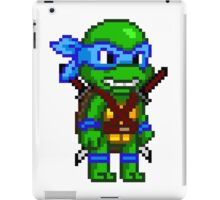 Leonardo Leads iPad Case/Skin