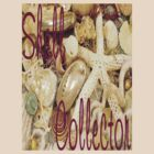 Shell Collector by Rosalie Scanlon
