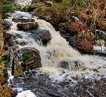Waterfall - Algonquin Park, Quebec by Michael Cummings