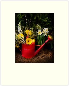 Watering can by Mike  Savad