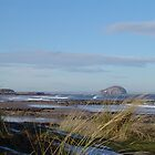 Bass Rock from Tantallon Beach,East Lothian by unique