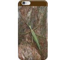 Green Insect, Royal National Park, Australia 2006 iPhone Case/Skin