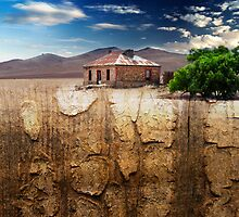 Outback Decay by Mark Higgins