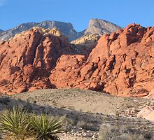 Red Rock Canyon by clevernamehere