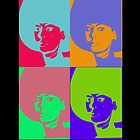 A Touch Of Warhol by HappyDaisy