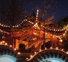 Chinese garden 1 by frenchhedonist