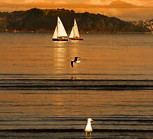 Lazy Sunday Afternoon At Petone Beach by Peter Kurdulija