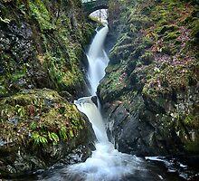 Aira Force, Cumbria, England by Bob Culshaw