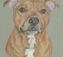 Terrier portrait in pastel by jdportraits