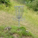 Chains of A Disc Golf Basket by Phil Perkins