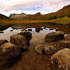 Rocks in Blea Tarn by Billlee