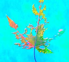 Somebody had Leaf for Lunch – Aqua by Mike Solomonson